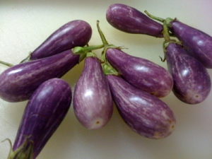 Fairy Tale Eggplants